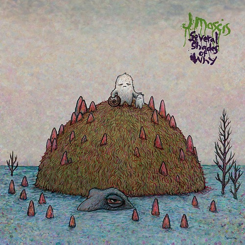 La jolie pochette de Several Shades of Why, nouvel album de J Mascis
