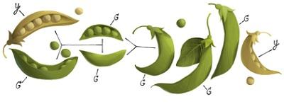 doodle Gregor Mendel