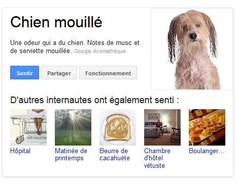 capture résultat pour la requête chien mouillé - Google Nose