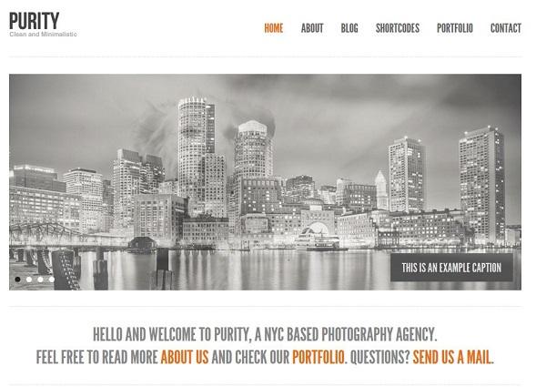 démo thème WordPress Purity